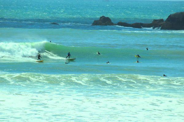 aprenda algumas dicas de surf para iniciantes