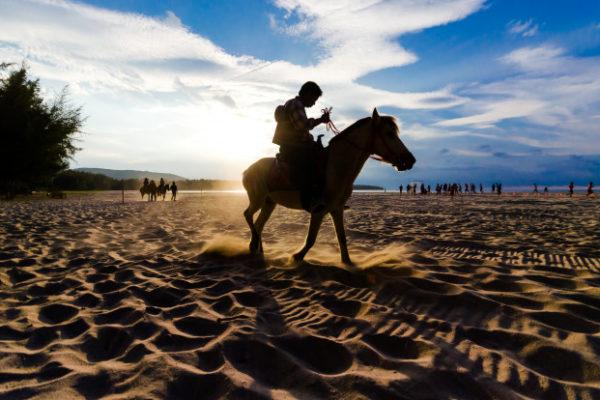 passeio a cavalo um jeito diferente de explorar a praia do rosa