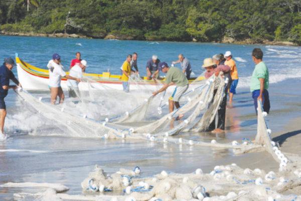 pesca artesanal da tainha e atracao da temporada